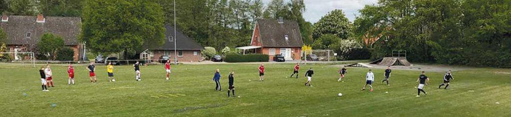 Training FSV