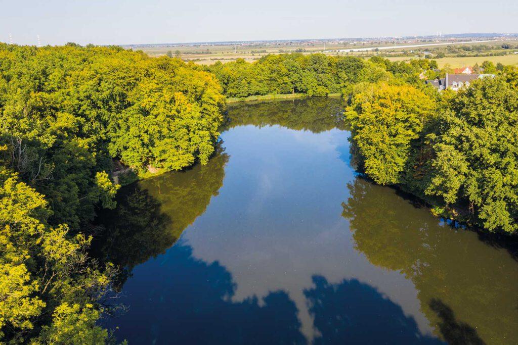 Teich in Dollern