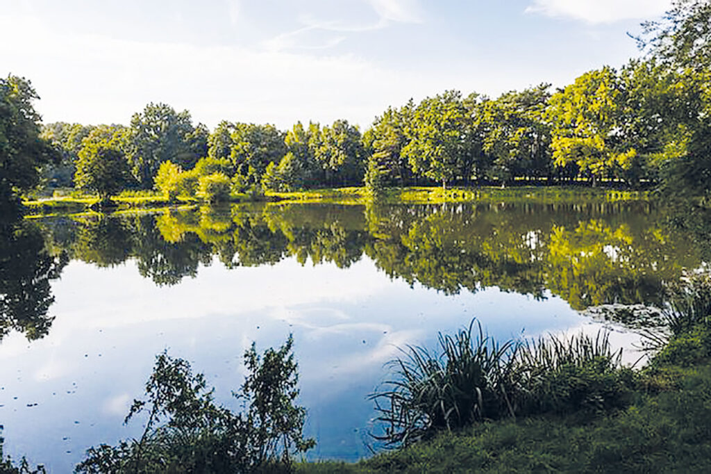 Nindorfer Teiche, Gewässer des AV Horneburg